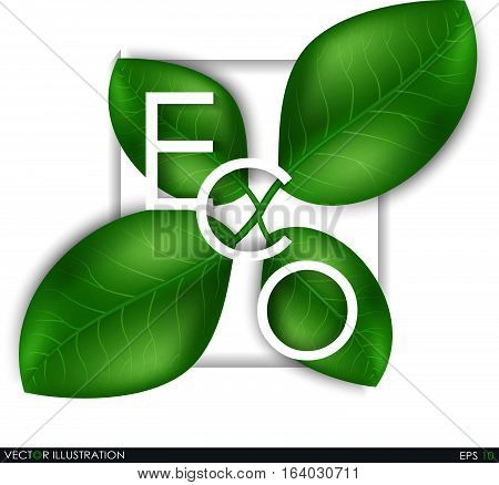Eco The Inscription Of The Leaves.