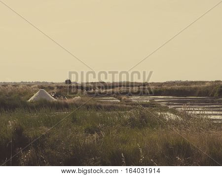 The salt marshes of Guerande in the Bretagne, France. Landscape of work place for collect salt on sunset