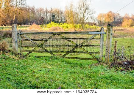 Old and crooked wooden gate near a nature area. The gate is closed and and locked with a chain and padlock.