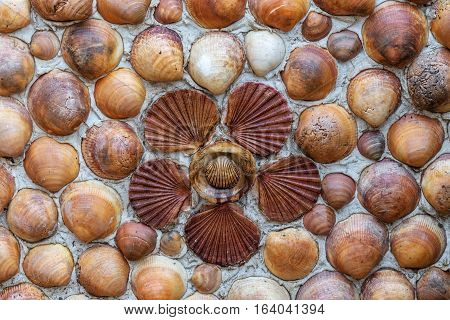Mosaic of seashells and flower shape on the wall. Close-up.