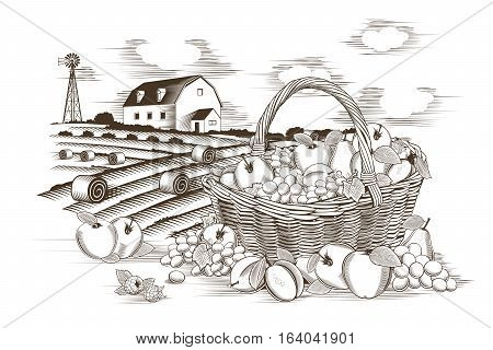 Fruit basket and farm in woodcut style.