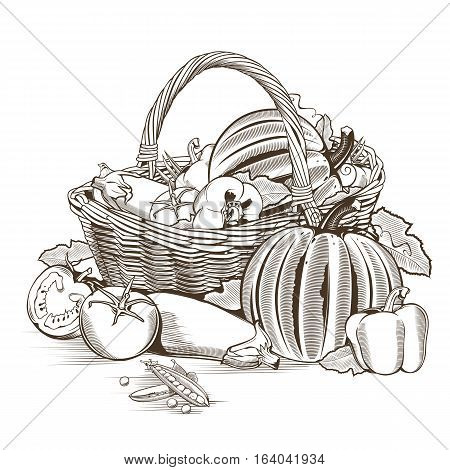 Vegetable basket on white background in woodcut style.