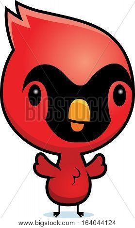 Cartoon Cardinal