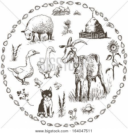 Set of hand drawn farm animals vector illustration