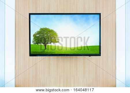 Black LED tv television screen mockup. Landscape grassland on monitor