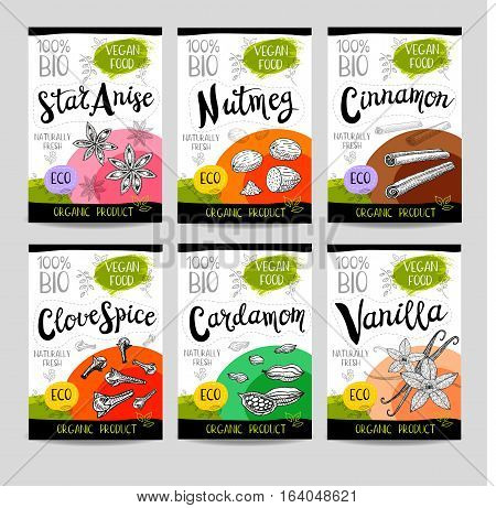 Set of colorful stickers, sketch style, food, spices. Cinnamon, vanilla, cardamom, star anise, nutmeg, clove. Spices, vegan food, organic product. Hand drawn vector illustration.