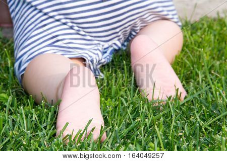 Cute baby crawling green grass. Rear view. Primary focus on baby feet.