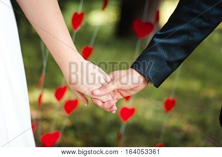 wedding  newlyweds holding hands with hearts on the backgrund