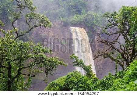 Beautiful hidden Ekom Waterfall deep in the tropical rain forest of Cameroon, Africa.