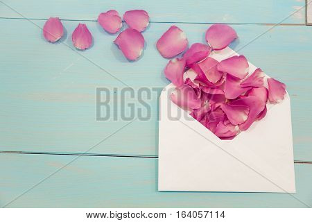 Blank White Post Cards, Empty Postcard, Postcrossing, Love Letter. Still Life, Top View, Copy Space.