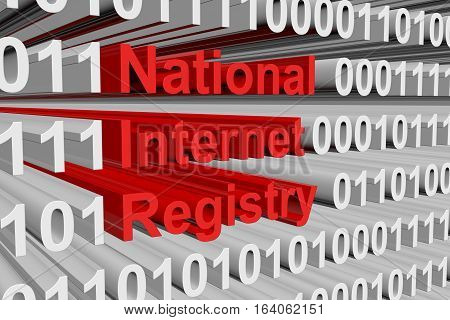 National Internet Registry in the form of binary code, 3D illustration