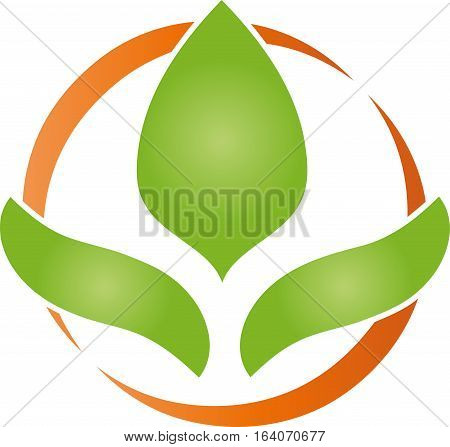 Three leaves and circle, naturopathic nature logo