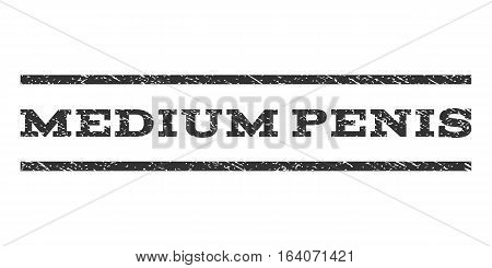 Medium Penis watermark stamp. Text tag between horizontal parallel lines with grunge design style. Rubber seal gray stamp with scratched texture. Vector ink imprint on a white background.