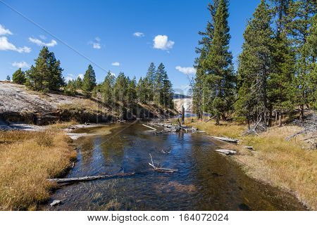 the scenic landscape of the Firehole River Flowing through Yellowstone National park