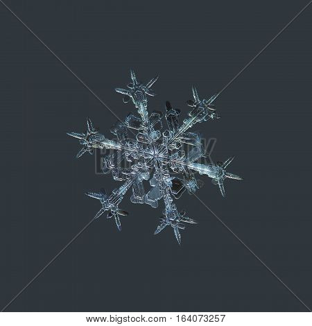 Snowflake isolated on dark cyan background: macro photo of real snow crystal, captured on dark woolen fabric in diffused light. This is medium size stellar dendrite snowflake with sharp, ornate arms.