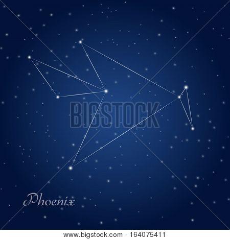 Phoenix constellation at starry night sky on dark sky