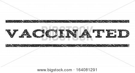 Vaccinated watermark stamp. Text caption between horizontal parallel lines with grunge design style. Rubber seal gray stamp with dirty texture. Vector ink imprint on a white background.