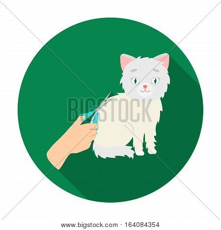 Grooming of a cat icon in flat design isolated on white background. Veterinary clinic symbol stock vector illustration.