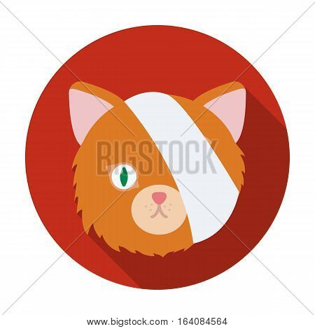 Sick cat with bandage on a head icon in flat design isolated on white background. Veterinary clinic symbol stock vector illustration.