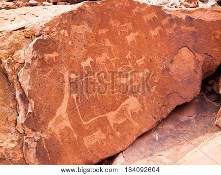 Bushman engravings in the granite rock, Twyfelfontein UNESCO World Heritage Site, Kunene Region, Damaraland, Namibia, Africa.