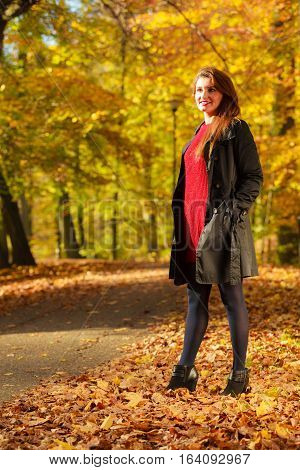 Girl taking walk through park. Young female walking through forest in autumn. Nature relax outdoors concept.