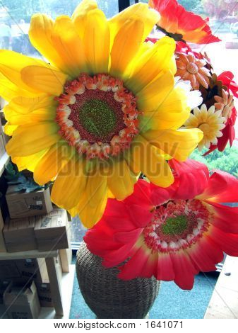 Close-Up Yellow & Red Sunflowers