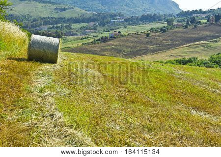 Landscape of Sicily with Hay Bale in Spring/
