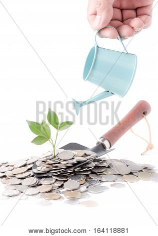 Businessman Watering A Tree Growing Out Of Silver Coins On Gardening Trowel