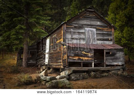 Old Wooden Cabin In The Woods Near Grover Hot Springs, Ca