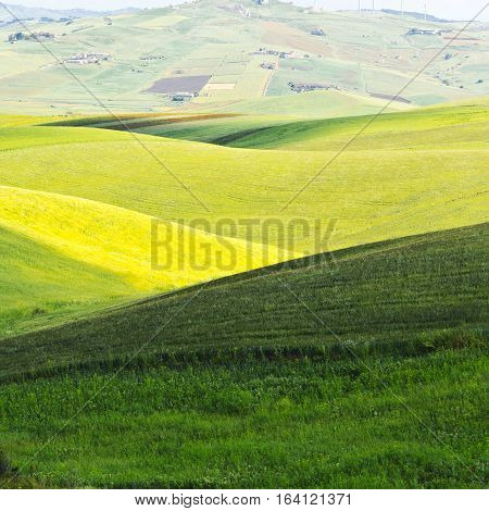 Stubble Fields on the Hills of Sicily