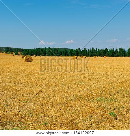 The Italian Landscape with Many Hay Bales