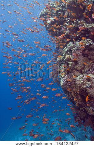 Underwater National Park