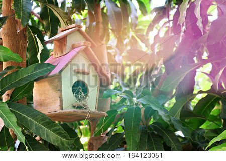 Bird house in tree and abstract background. Wooden bird house