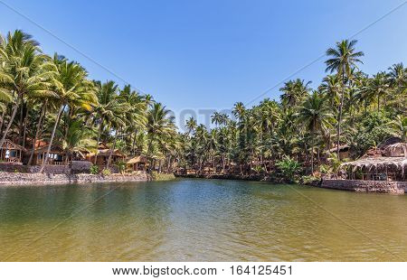 The mouth of the river going to the ocean with beach lodges under a shadow of palm trees.