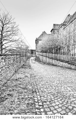 Belgian houses with gardens along a quiet street with hedges and trees. The old pavement covered with moss in St Hubert Belgium. Black and White Picture
