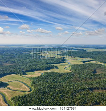 Forest plains and river aerial view on a sunny summer day.