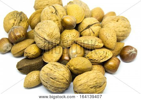 A large collection of mixed nuts including walnuts, hazel nuts, Brazil nuts, chestnuts and more all laid on a white background.