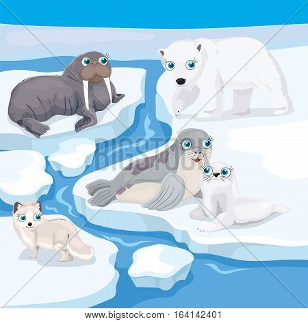 Vector illustration of north animals - walrus, seal, polar bear, arctic fox