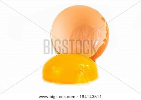 Egg broken close up of eggshell with yolk on white background