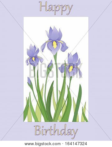 an illustration of a birthday card with an iris flower design on a lilac background and the words happy birthday