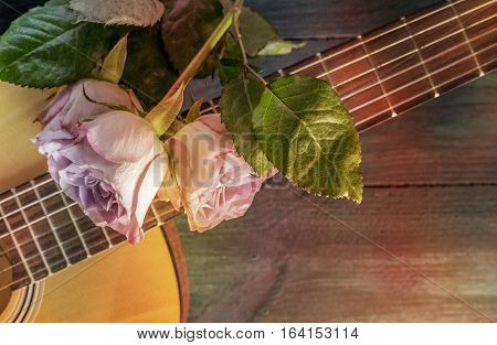A photo of a guitar neck with tender pink roses, on a dark wooden background with copyspace. Selective focus, toned photo