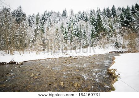 Winter mountain river in the forest. National park