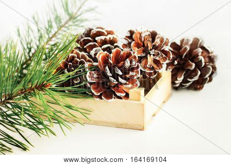 Cones painted white tips in wooden box, pine boughs. Winter-themed simple natural home decor.