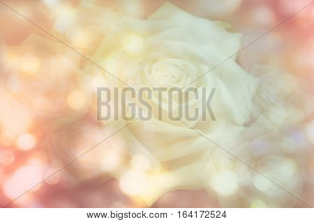 Abstract roses with bokeh background - stock photo