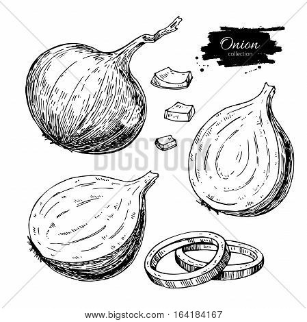 Onion hand drawn vector set. Full, rings and Half cutout slice. Isolated Vegetable engraved style object. Detailed vegetarian food drawing. Farm market product. Great for menu, label, icon