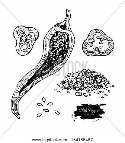 Chili Pepper hand drawn vector illustration. Vegetable engraved style object. Isolated hot spicy mexican pepper, sliced and crushed pieces, seed. Detailed vegetarian food drawing. Eco Farm market product. Paprika icon