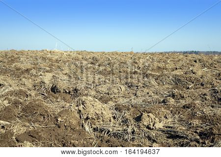 Plowed field against a cloudless blue sky in sunny spring day