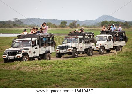 MINNERIYA, SRI LANKA. July 21, 2016: Minneriya National Park. Many jeeps carrying many tourists visiting the famous national park of Sri Lanka. A row of cars goes into the park in search of wild animals.