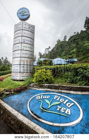 NUWARA ELIYA, SRI LANKA. July 25, 2016: Tea factory near Nuwara Eliya in Sri Lanka. Tea cultivation. Tea industry plantation. Blue field tea in Sri Lanka.