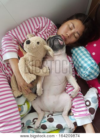 Asian Woman and her funny ugly pug dog sleep in the bed with dog doll.